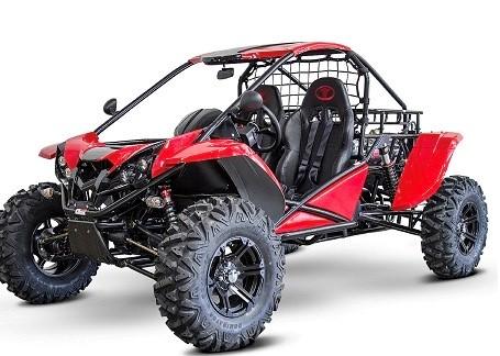 BUGGY RENLI  -  1100CC.                 # ! NEW MODEL..2021 !#